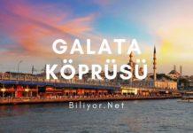 istanbul galata köprüsü hangi iki semti birbirine bağlar